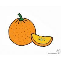 Disegno di Arancia a colori