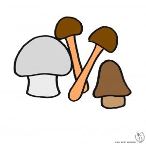 Disegno di funghi a colori per bambini gratis for Fungo da colorare per bambini