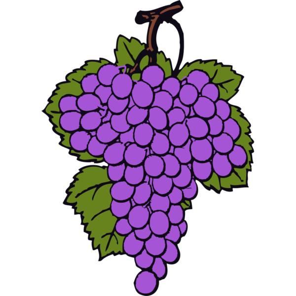 Disegno di Grappolo di Uva a colori