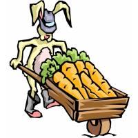 Disegno di Coniglio con Carote a colori