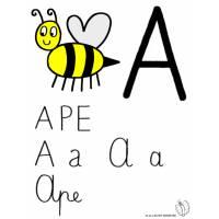 Disegno di Lettera A di Ape a colori