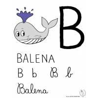 Disegno di Lettera B di Balena a colori