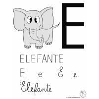 Disegno di Lettera E di Elefante a colori