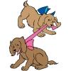 disegno di Cuccioli di Coker a colori