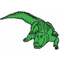 Disegno di Il Coccodrillo a colori