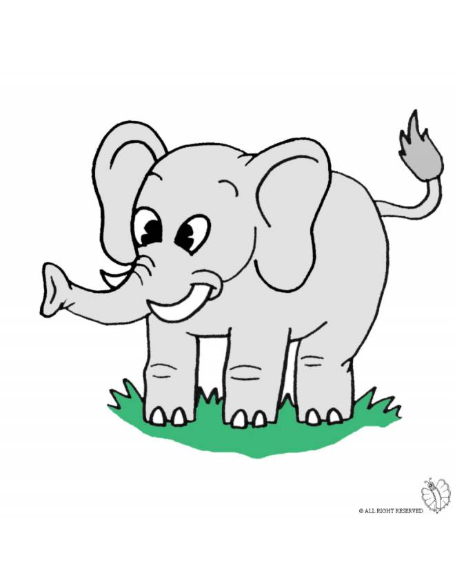 Disegno di elefante a colori per bambini - Immagini di animali da stampare gratuitamente ...