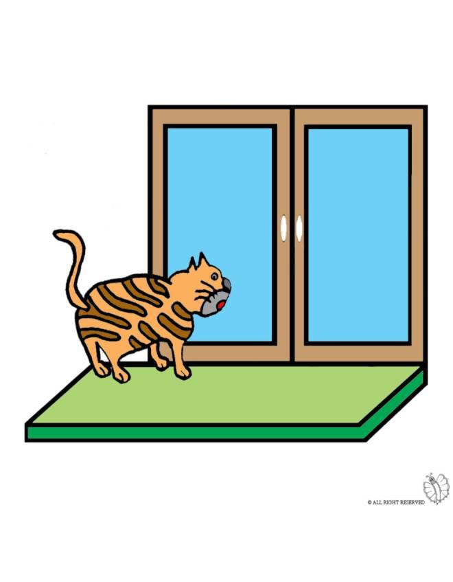 disegno di Gatto sulla Finestra a colori