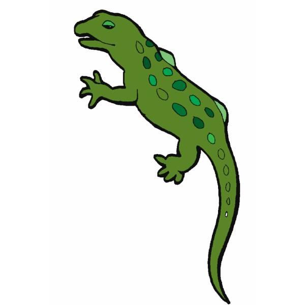 Disegno di iguana a colori per bambini - Immagini di marmellata di animali a colori ...