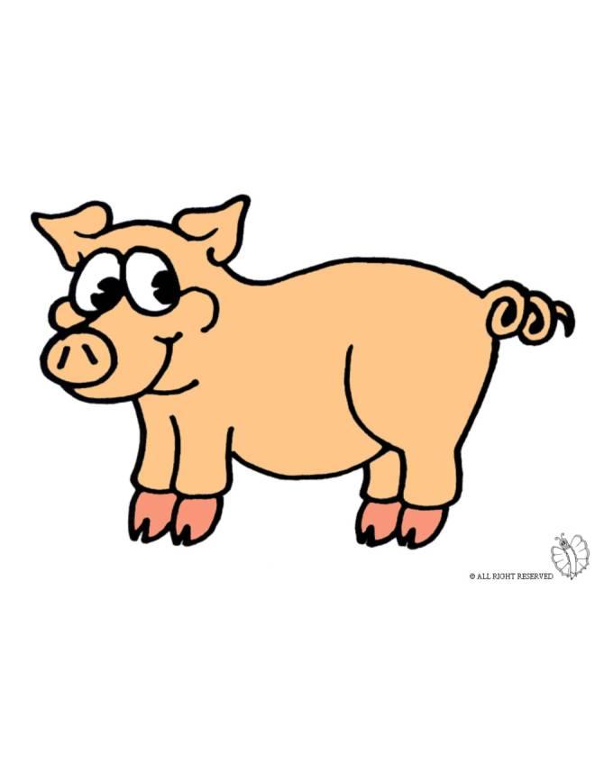 Disegno di maialino a colori per bambini