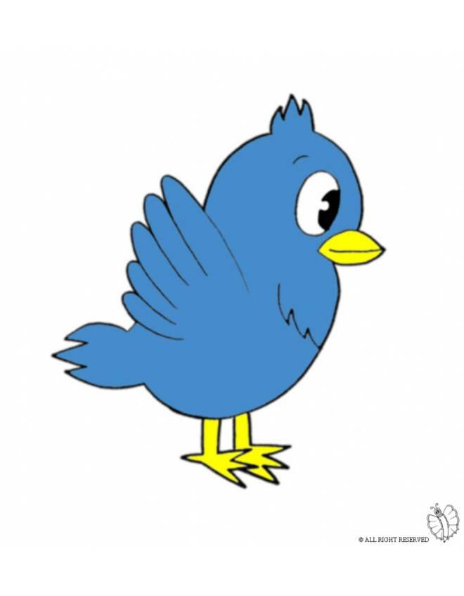 Disegno di uccello a colori per bambini for Disegni di animali per bambini