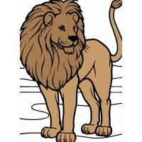 Disegno di Leone a colori