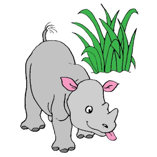 Disegno di Rinoceronte a colori
