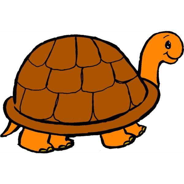disegno di tartaruga a colori per bambini
