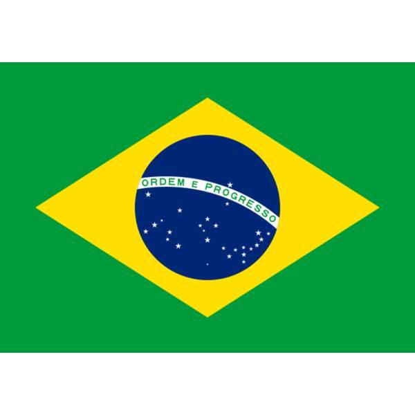 Disegno di Bandiera Brasile a colori