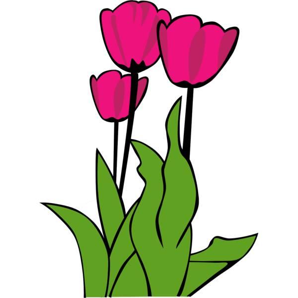 Disegno di fiori tulipani a colori per bambini for Design del mazzo online