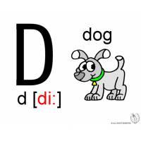 Disegno di Lettera D Alfabeto Inglese a colori