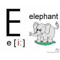 Disegno di Lettera E Alfabeto Inglese a colori