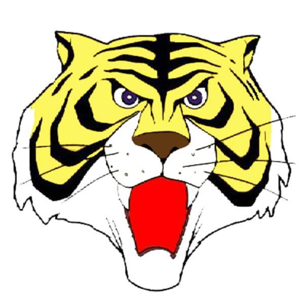Disegno di Maschera Uomo Tigre a colori