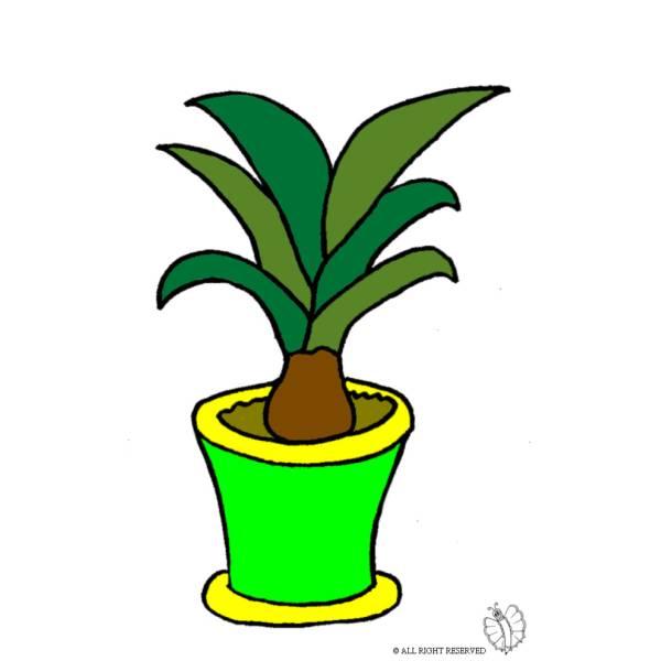 Disegno di Pianta nel Vaso a colori