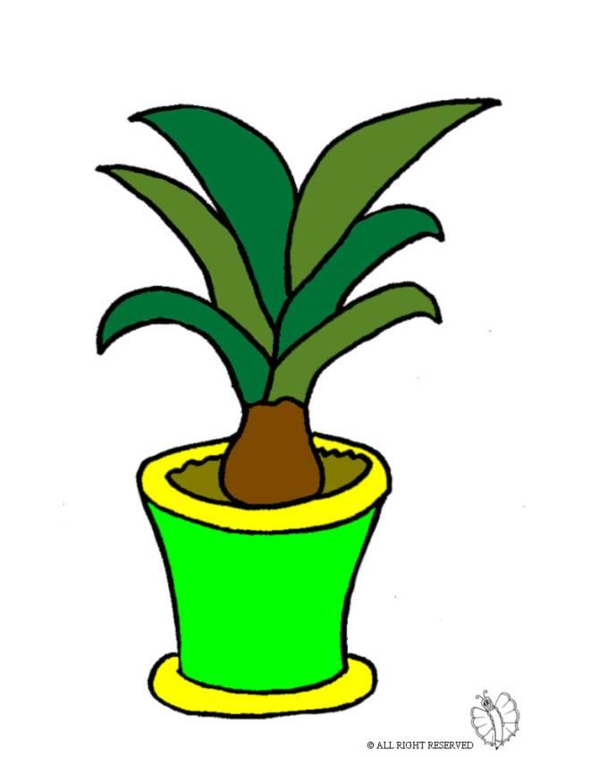 Disegno di pianta nel vaso a colori per bambini for Vaso di fiori disegno