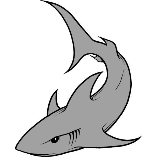 disegno di lo squalo a colori per bambini