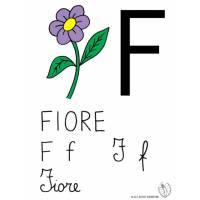 disegno di Lettera F di Fiore a colori