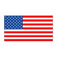 Disegno di Bandiera Americana a colori