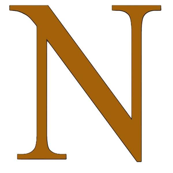 Disegno di Lettera N a colori