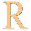 Disegno di Lettera R a colori
