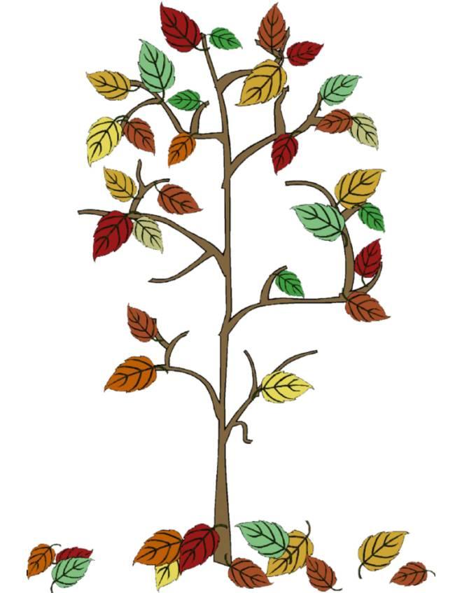 Disegno di autunno foglie che cadono a colori per bambini for Foto di alberi da colorare