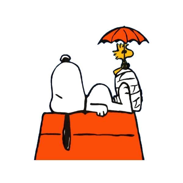 Disegno di Snoopy sulla Casetta a colori