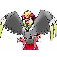 disegno di Pokemon Pidgeot a colori