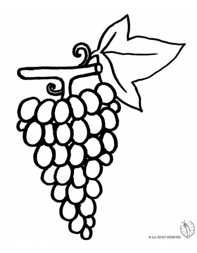 disegno di Pigna d'uva da colorare