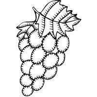 Disegno di Uva da colorare