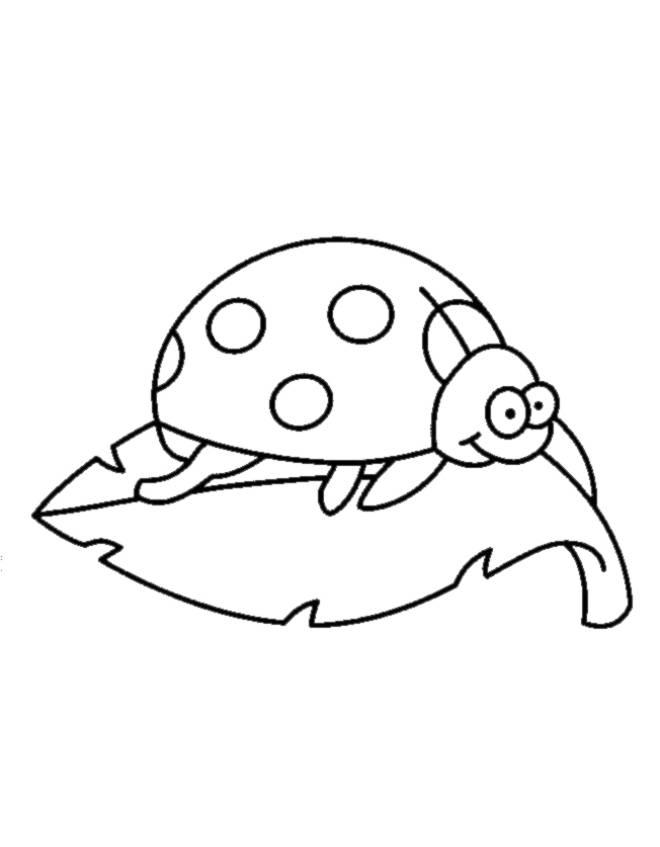 disegno di Coccinella sulla Foglia da colorare