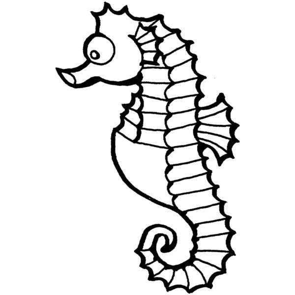 Disegno di cavalluccio marino da colorare per bambini for Immagini cavalluccio marino