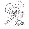 disegno di Coniglietta con Farfalla da colorare