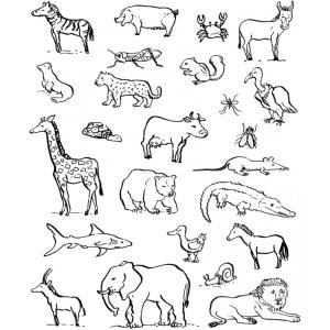 Disegno di animali da colorare per bambini gratis - Bambini animali da colorare pagine da colorare ...