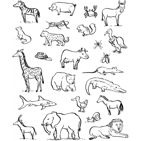 Disegno di animali da colorare per bambini for Disegni di cani da stampare e colorare