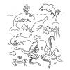 disegno di Animali del Mare da colorare