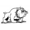 disegno di Bulldog da colorare