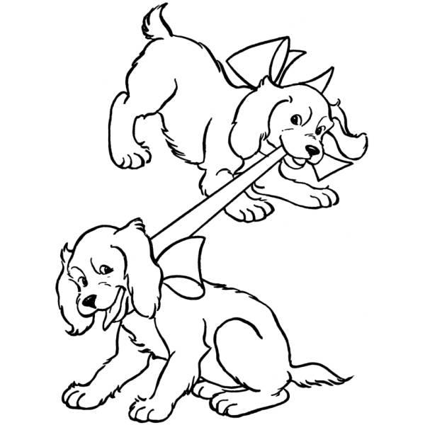 Disegno Di Cuccioli Di Coker Da Colorare Per Bambini
