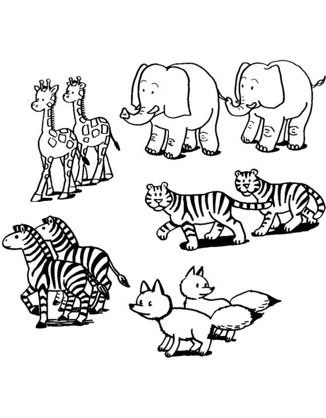 Disegno di coppie animali da colorare per bambini