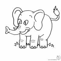 Disegno di Elefante da colorare