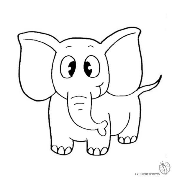 Disegno Di Elefante Da Colorare Per Bambini
