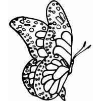 Disegno di Farfalla Fantasy da colorare