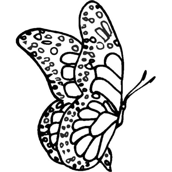 Disegno Di Farfalla Fantasy Da Colorare Per Bambini