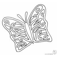 Disegno di La Bella Farfalla da colorare