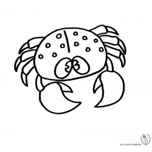 Disegno di granchio da colorare per bambini gratis for Immagini di animali marini da colorare