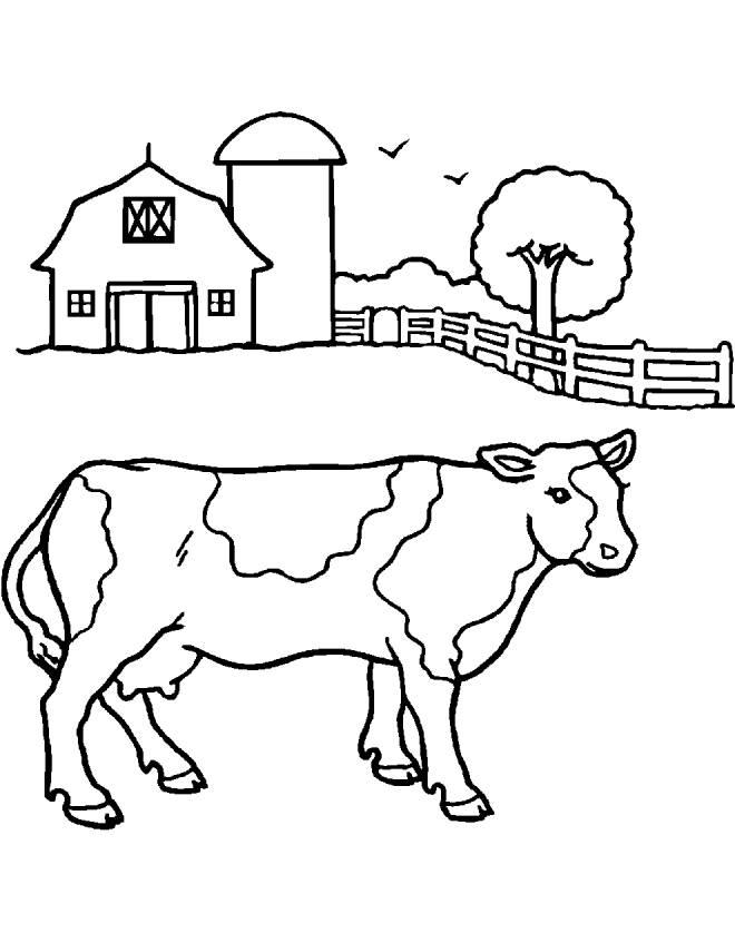 Stampa disegno di mucca della fattoria da colorare for Disegno della fattoria americana
